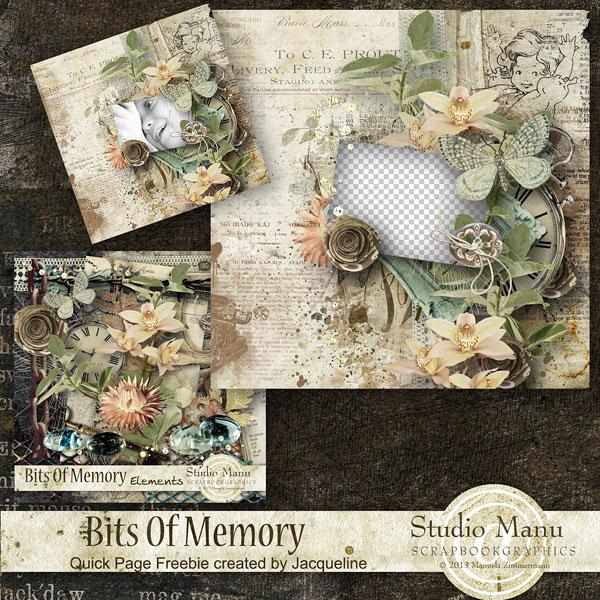 http://digital-scrap-spirit.com/manudesigns/wp-content/gallery/bits-of-memory/mzimm_bitsofmemory_jacq_free_qp_prev.jpg?i=1811032643