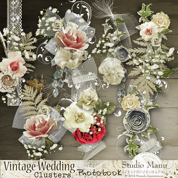 Vintage Wedding Photo Book - bonus clusters