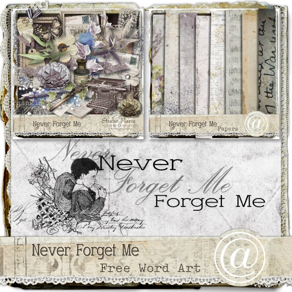 Never Forget Me Word Art Freebie