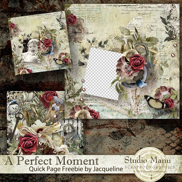 http://digital-scrap-spirit.com/manudesigns/wp-content/uploads/2014/06/mzimm_perfectmoment_jacq_freeqp_prev.jpg