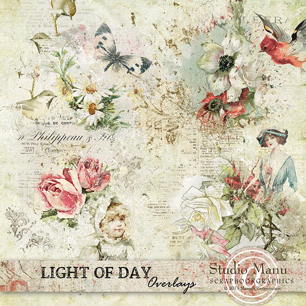 mzimm_lightofday_ov_600