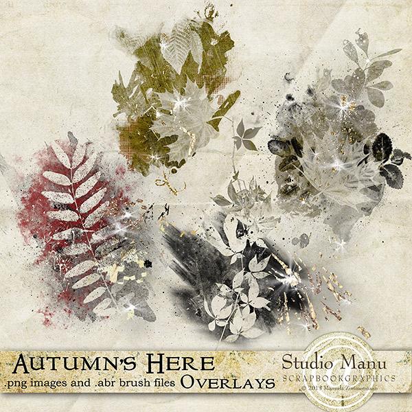mzimm_autumnshere_ov2_600