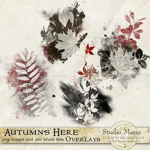 mzimm_autumnshere_ov_600