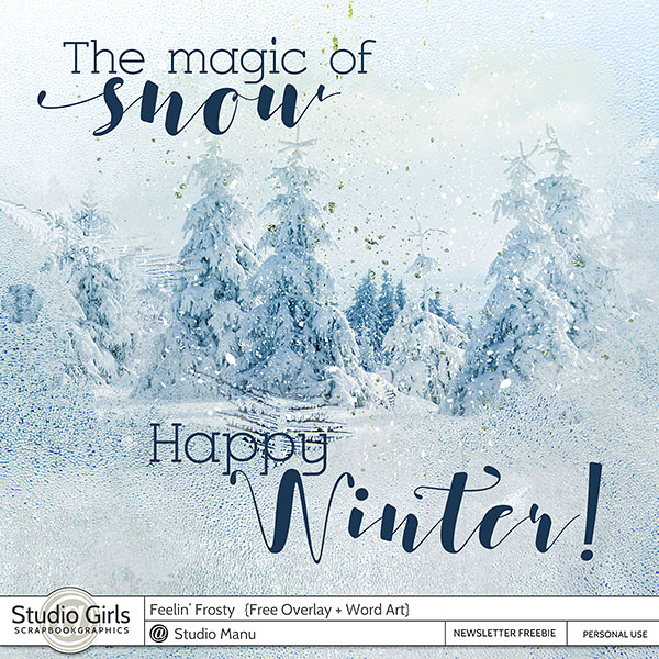 Winter Freebie Overlay and Word Art