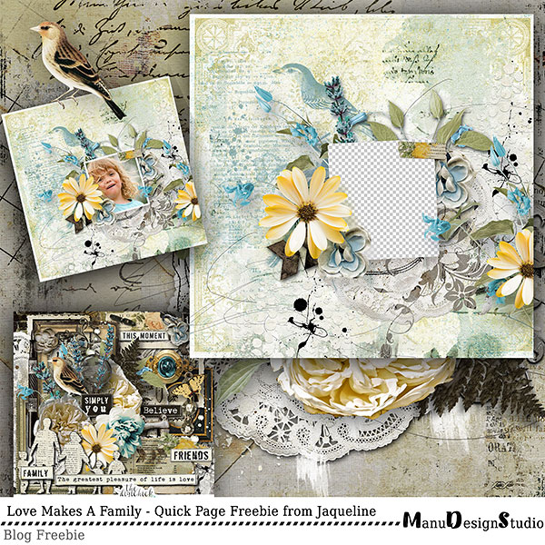 http://digital-scrap-spirit.com/manudesigns/wp-content/uploads/2018/04/manu_love_makes_a_family_jacq_qp_prev.jpg