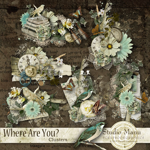 Where Are You ? - Clusters