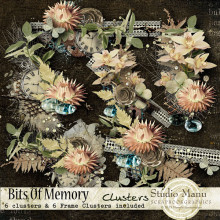 Bits Of Memory - Clusters