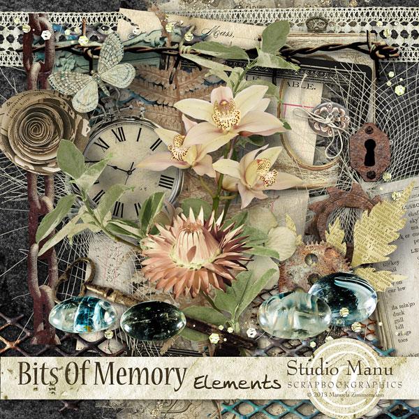 Bits Of Memory - Page Kit