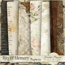 Bits Of Memory - Papers