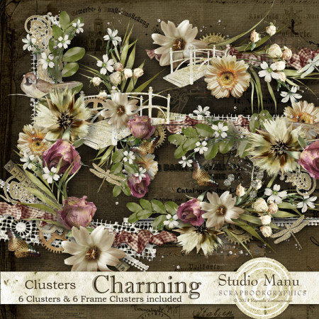 Charming - Clusters