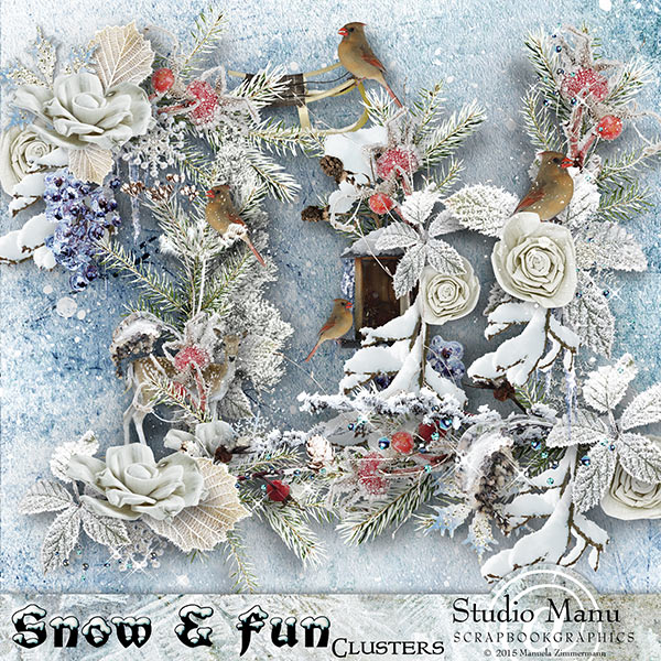 Snow And Fun Clusters