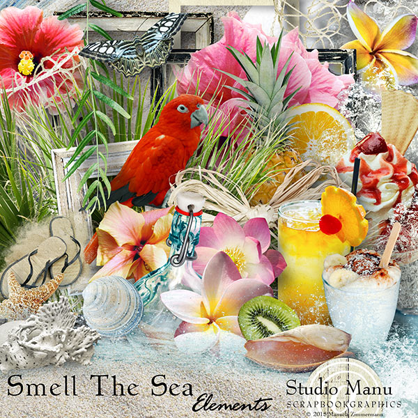 Smell The Sea - Elements