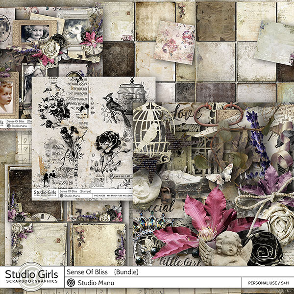 Vintage Scrapbooking Collection Sense Of Bliss