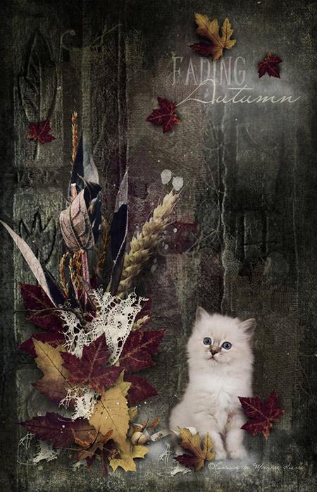 Fading Autumn Sweet little kitten scrapbook card
