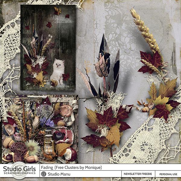 Fading Autumn Cluster Freebie by Monique