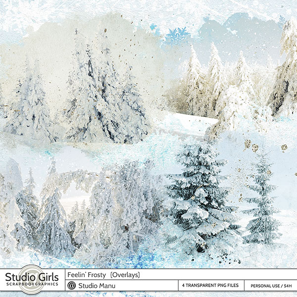 Winter digital scrapbook snow overlays