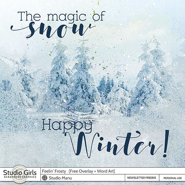 Winter Freebie Overlay and Word Art