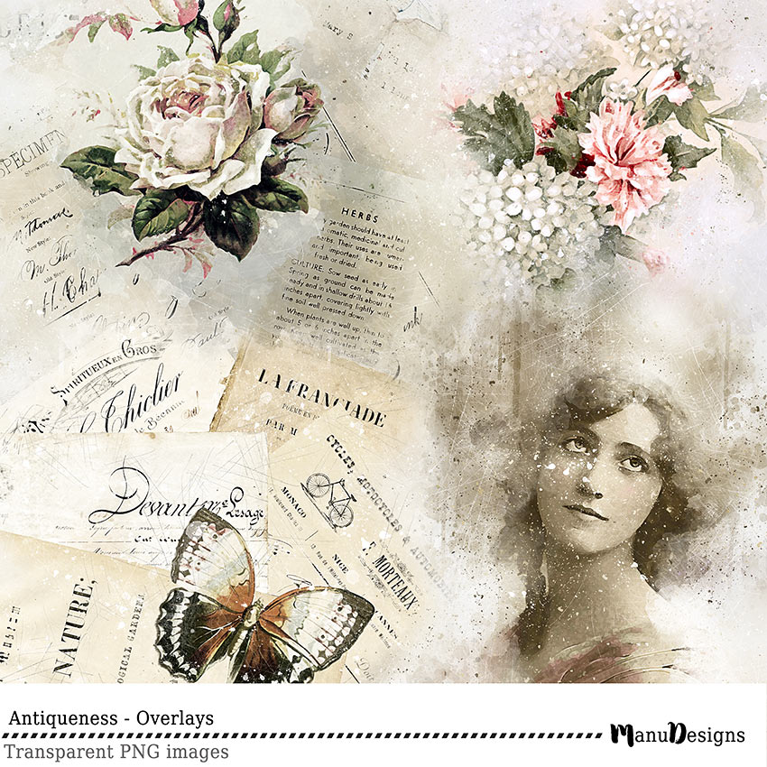 vintage digital transparent overlays
