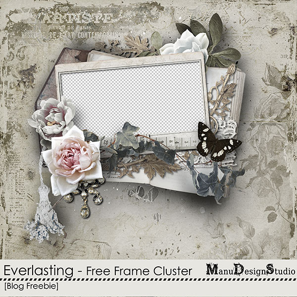 https://digital-scrap-spirit.com/manudesigns/wp-content/uploads/2018/08/manu_everlasting_free_frame-cl-prev.jpg
