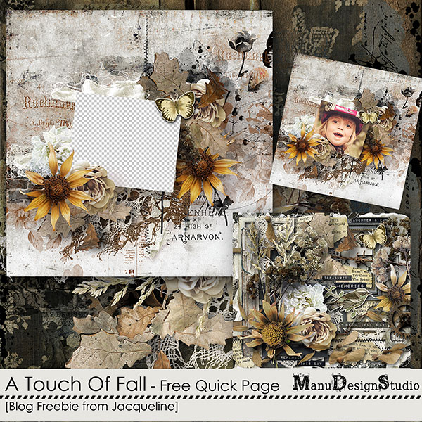 https://digital-scrap-spirit.com/manudesigns/wp-content/uploads/2018/09/manu-touch-of-fall-jacq-qp-prev.jpg