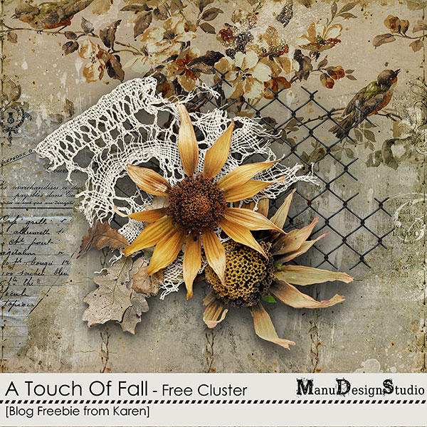 https://digital-scrap-spirit.com/manudesigns/wp-content/uploads/2018/09/manu-touch-of-fall-karen-cl1-prev.jpg